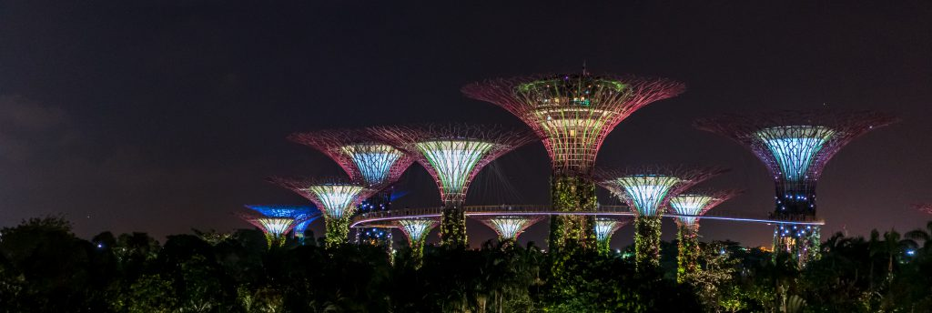 Singapore Short Trip - Garden By The Bay