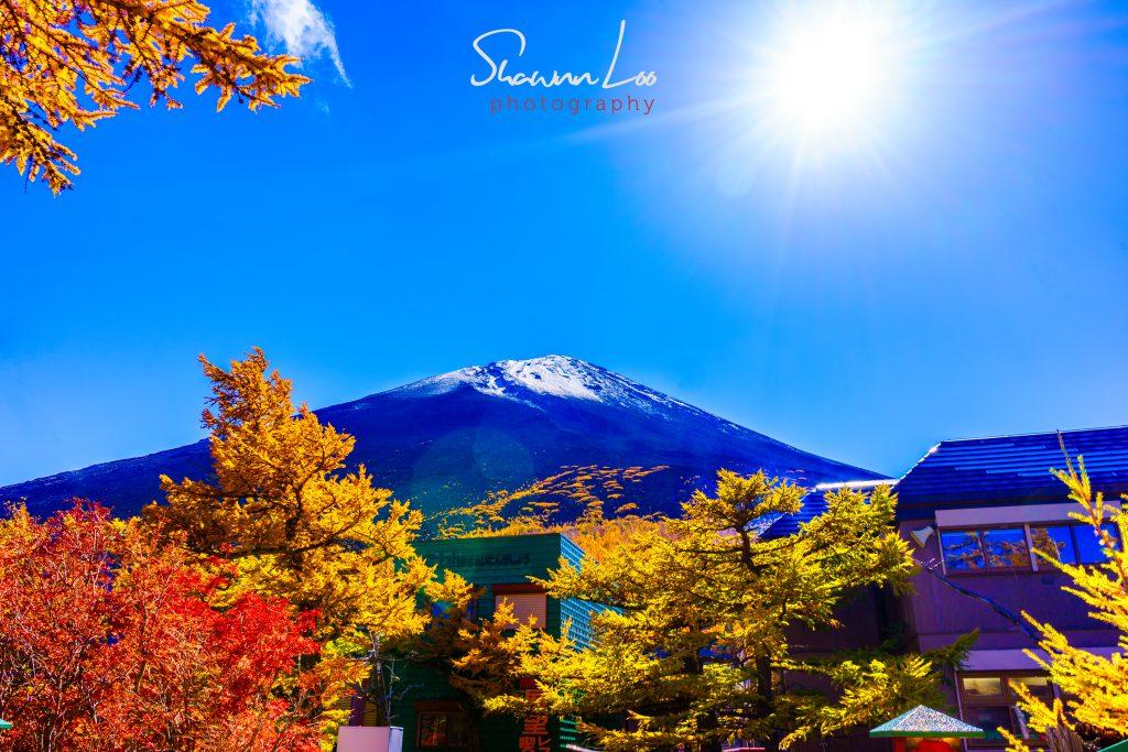 Day 3 Japan Tokyo Trip 2015
