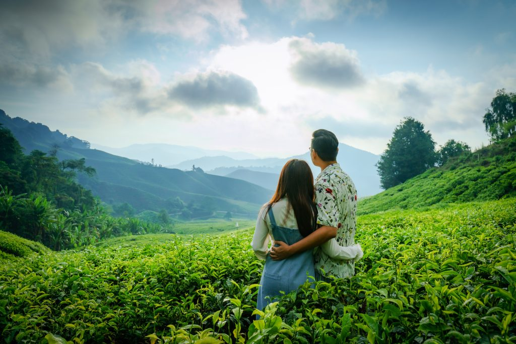 The sunrise moment at Boh Teh Field from Sungai Palas, Cameron Highland